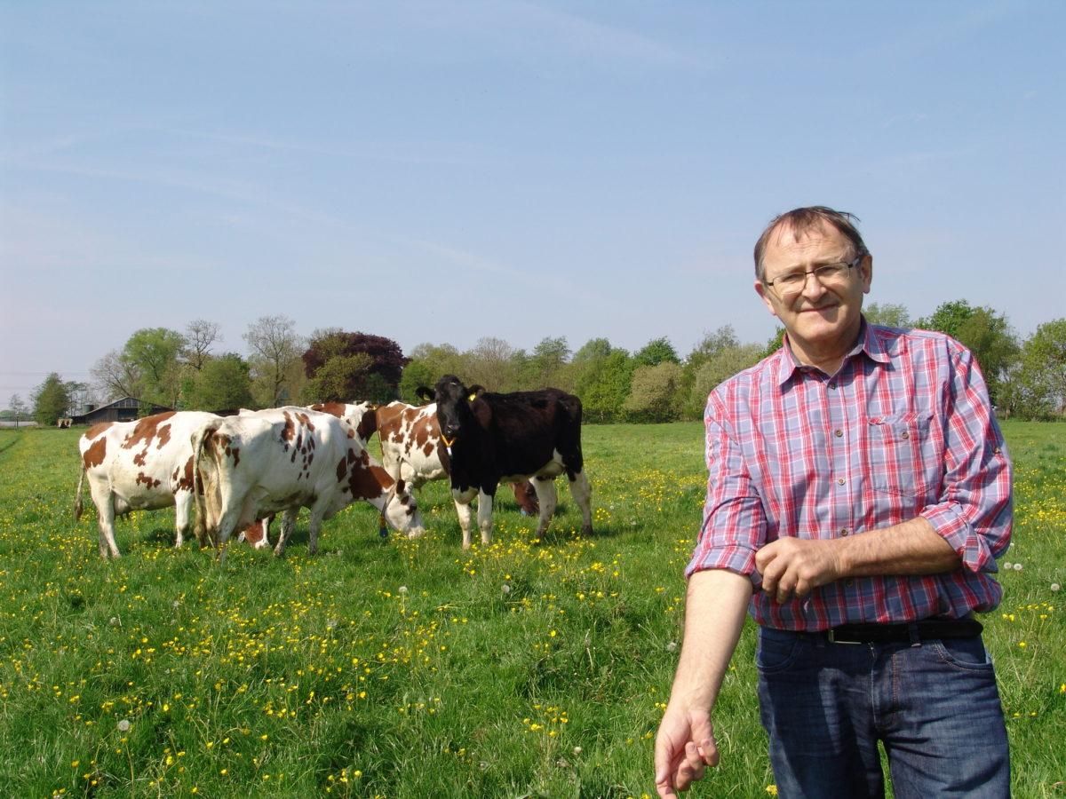 Landwirt Bernd Voß lkrempelt sich die Ärmel hoch. Im Hintergrund mehrere Kühe.